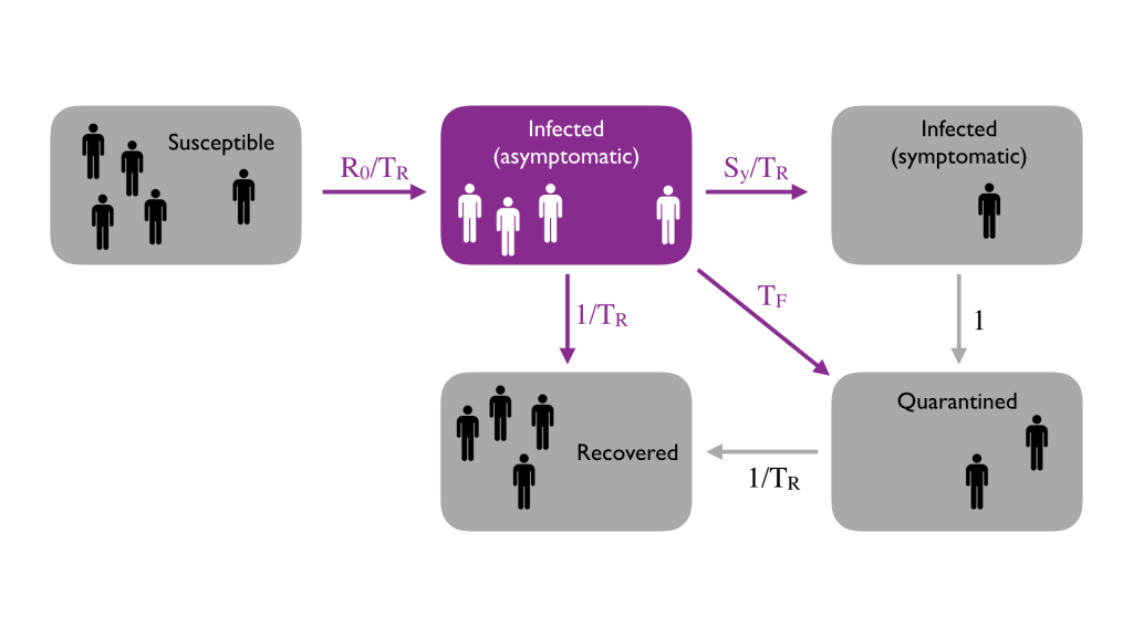 Researchers with the IDSS Covid-19 Collaboration (Isolat) are designing a control model for testing and isolating members of communities like MIT's to reduce Covid-19 infection.